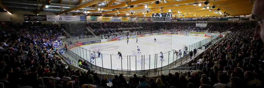 fischtown pinguins stadion